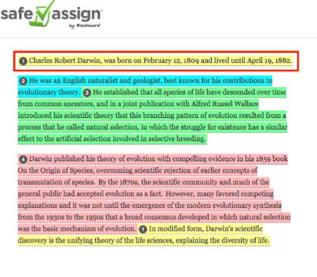 How SafeAssign Originality report looks like