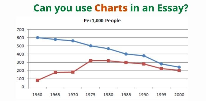 Can an Essay have Charts